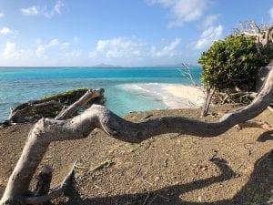 Grenada charter guide