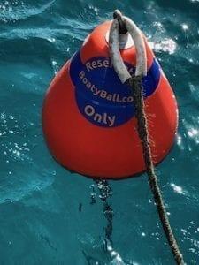 Boaty Ball Mooring